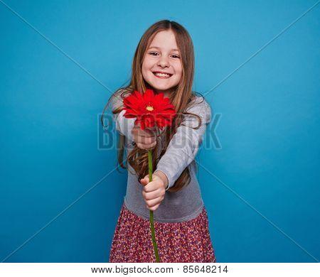 Charming girl giving a gerbera