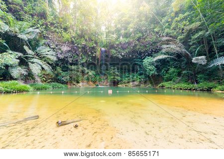 Rainforest Natural Pool And Waterfall