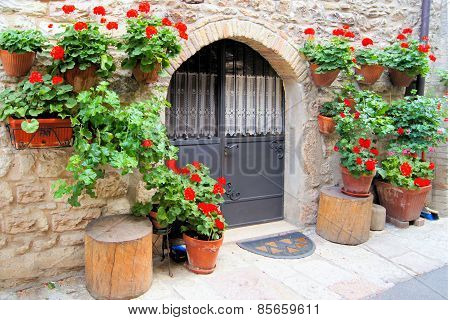 Flowers along medieval wall