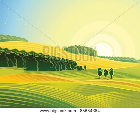 Rural landscape with field. Morning mood.