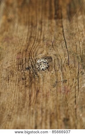Jewellery. One crystal on the wooden table