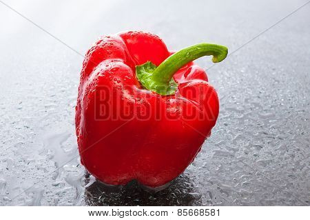 Red Pepper On A Reflective Glass