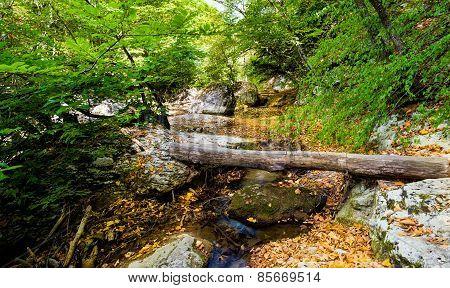 Bridge in canyon.