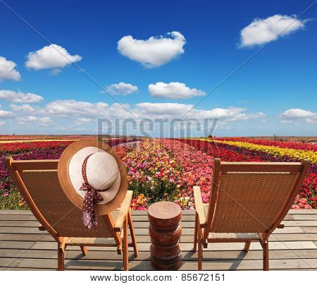 Two chaise lounges for rest stand on a scaffold at a picturesque flower field. On one chaise lounge the elegant straw hat hangs. Spring buttercups grow multi-colored strips