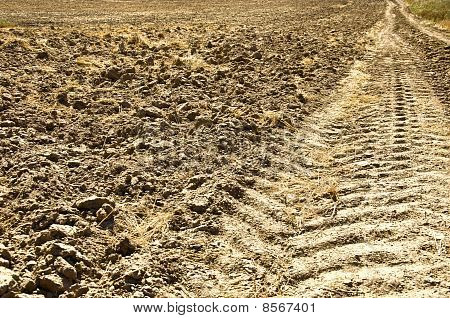 Fresh Tractor Track In The Dirt