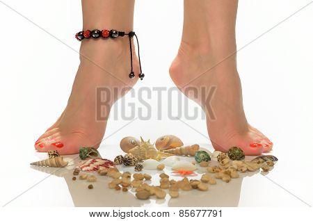 Female legs in the bracelet are on seashells