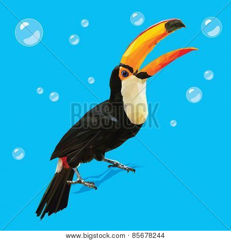 Vector Polygonal Toucan