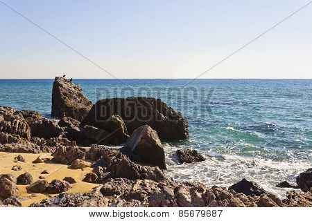 Seascape With Some Birds In The Rocks Of A Beach