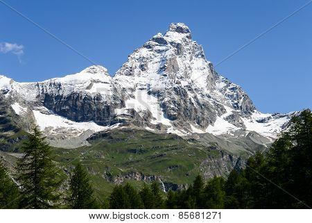 The Matterhorn in a summer morning