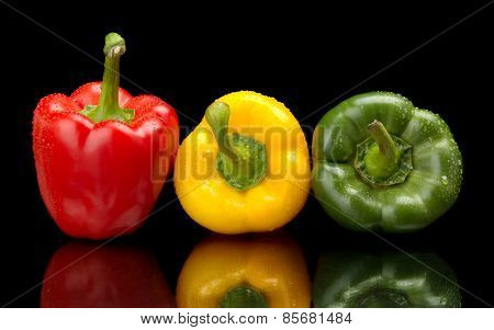 Red,green,yellow Wet Bell Peppers On Black With Water Drops