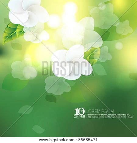 eps10 vector white flower blossom spring season beautiful sunlight bokeh nature ecology background