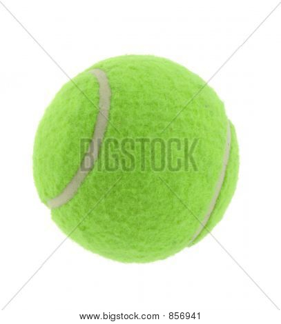 tennis ball on pure white background