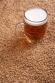 image of malt  - Mug of light beer standing on malted barley grains - JPG