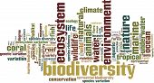 picture of biodiversity  - Biodiversity word cloud concept - JPG