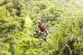 picture of canopy  - Woman going on a jungle zipline adventure - JPG