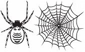 stock photo of spider web  - Spider and Web - JPG