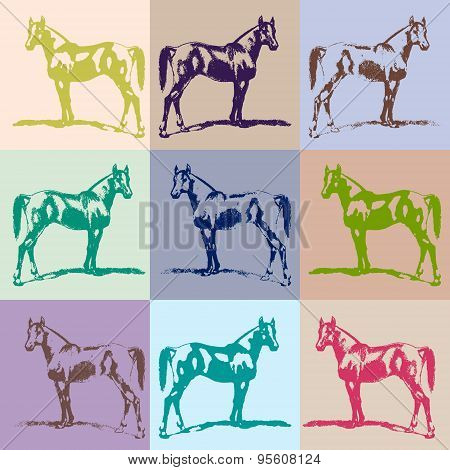 Horse, Stallion Silhouette (arab). Warm Color, Pastel. Collection.