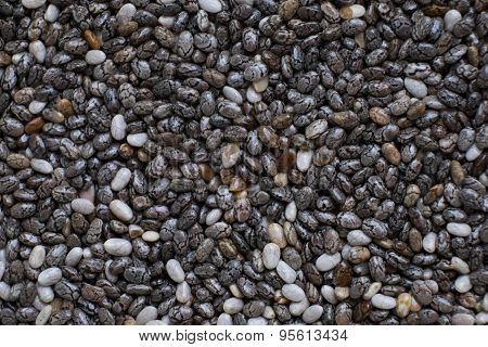 Closeup Of Chia Seeds