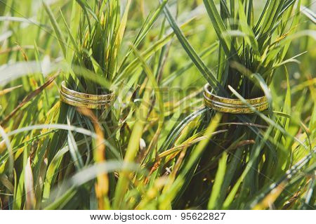 Two golden wedding rings on green grass