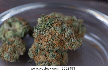 Close up of Blueberry Headband Medical Marijuana