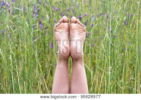 child's dirty bare feet in wildflowers
