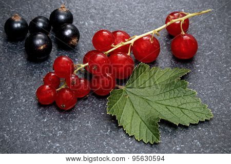 Redcurrant and blackcurrant on stone table