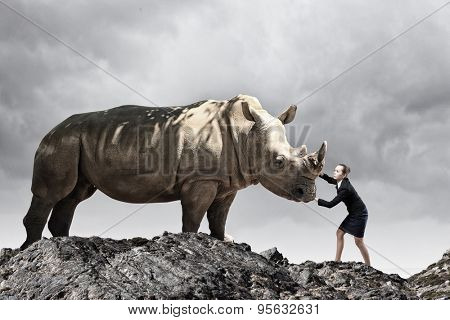 Businesswoman making effort to move huge rhino