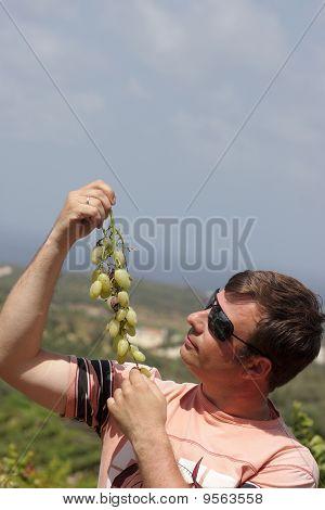 Man Looks At Vine
