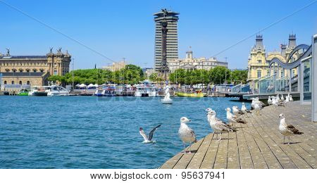 panoramic view of the Port Vell and the Columbus Monument at the lower end of La Rambla promenade in Barcelona, Spain