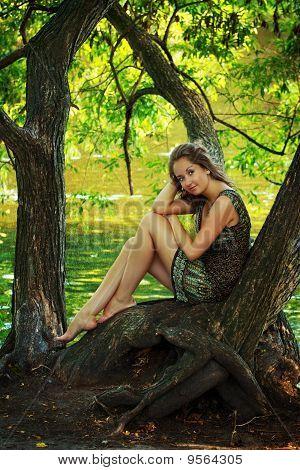 Beautiful Girl Sitting On A Large Tree