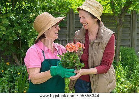 Two Happy Senior Ladies Gardening Together