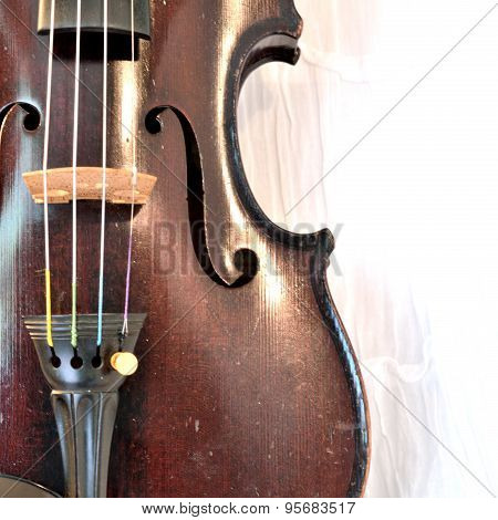 Antique Violin Closeup Against White, Square Image