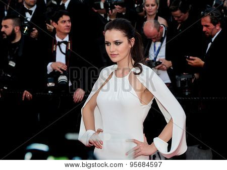 Fahriye Evcen attends the 'Carol' premiere during the 68th annual Cannes Film Festival on May 17, 2015 in Cannes, France.