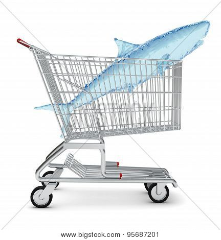 Water shark in shopping cart