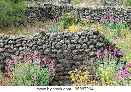 Lava Stone Ruins