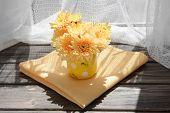 pic of chrysanthemum  - Beautiful chrysanthemums in pitcher on fabric background - JPG