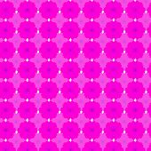 picture of cosmos flowers  - Pink cosmos seamless pattern background - JPG