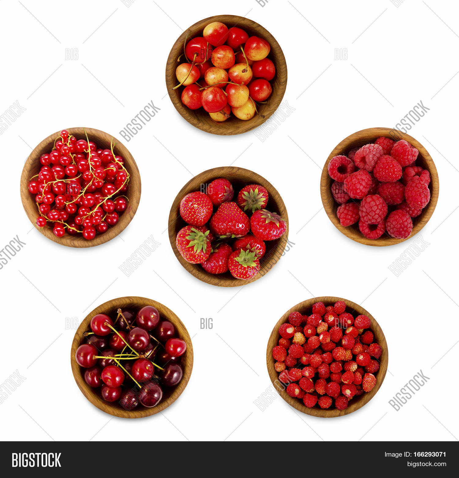 collection various red berries image u0026 photo bigstock