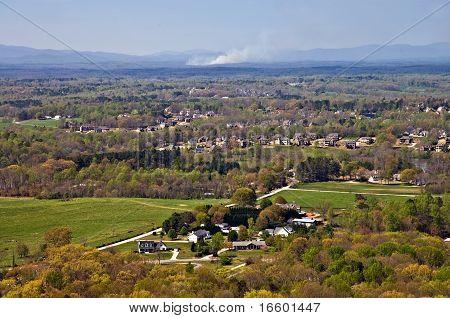 Suburban Landscape