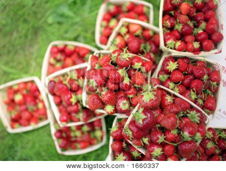 Pile Of Berries