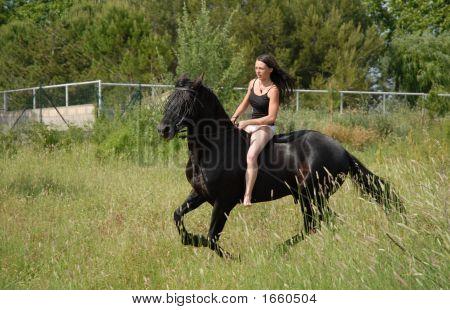 galoppierenden Pferd und teen
