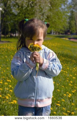 Girl With Dandelions Bouquet