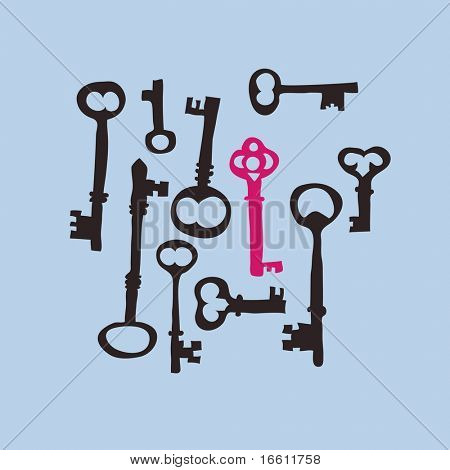 collection of skeleton keys