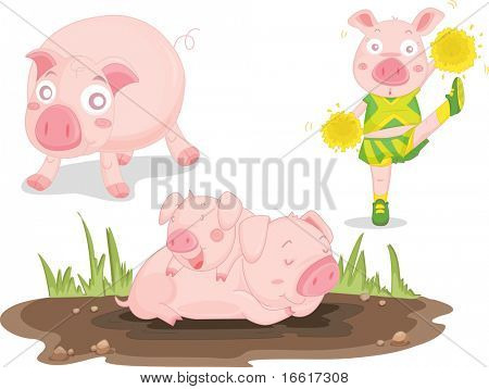 an illustration of pigs on white