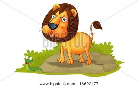 illustration of lion on white
