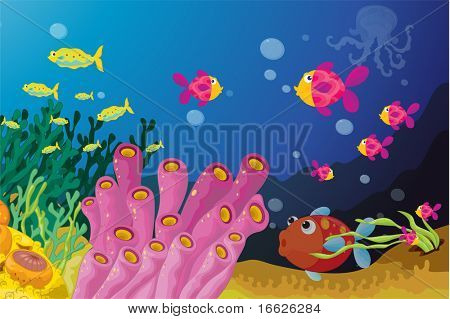 coral reef (vector image available in portfolio)