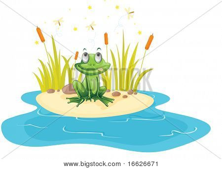 frog near a pond  (vector illustration also available in portfolio)