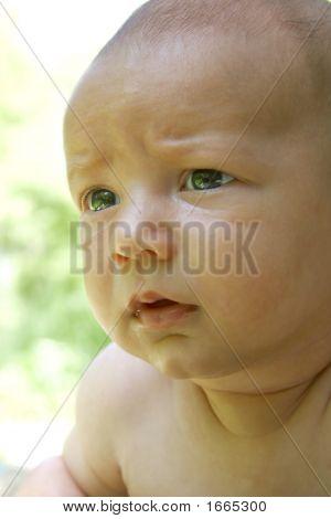 Bildnis eines Knaben ernsthafte baby