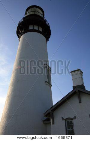 Yaquina Head Lighthouse 10