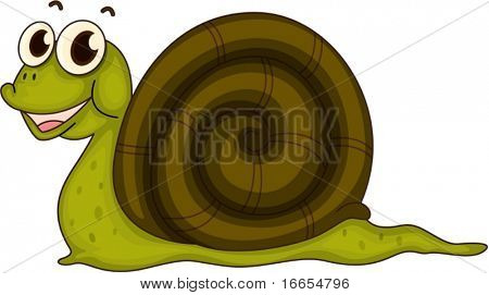 illustration of snail on a white background